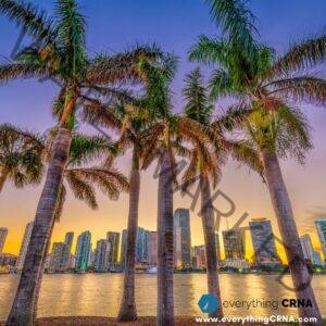 Why Anesthesiologist Assistant Programs Florida_